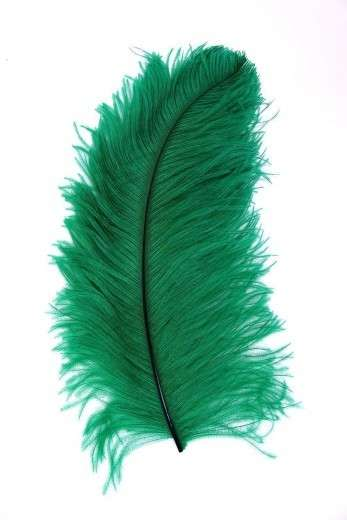 Straußenfeder Karneval grün