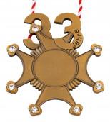 Karnevalsorden 33 Jahre mit Schmucksteinen altgold