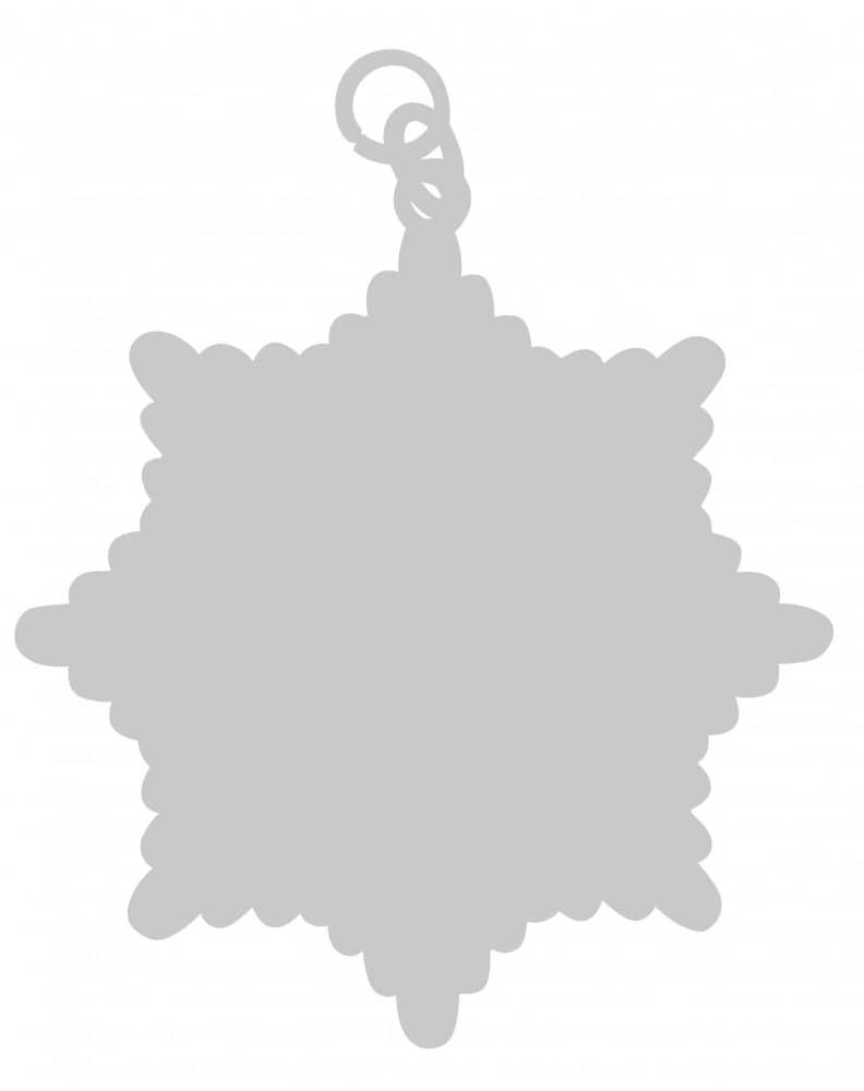 Karnevalsorden - großer Sternorden silber mit gekreuzten Zeptern+Kronen